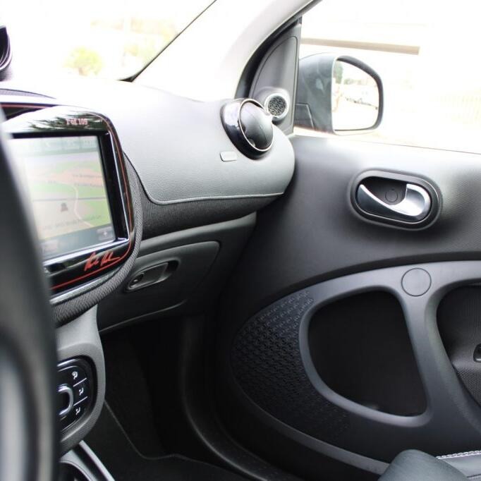 SMART ForTwo 13